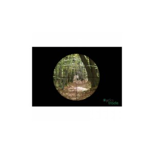 Riflescope Leica Magnus 1-6,3x24 L-4a QM5